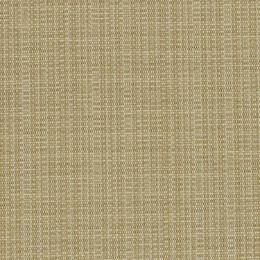 Richloom Fortress Acrylic Aytribeca Oatmeal Solid Color Indoor